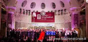 Il Merano WineFestival apre le sue porte a novembre - Teatro Naturale