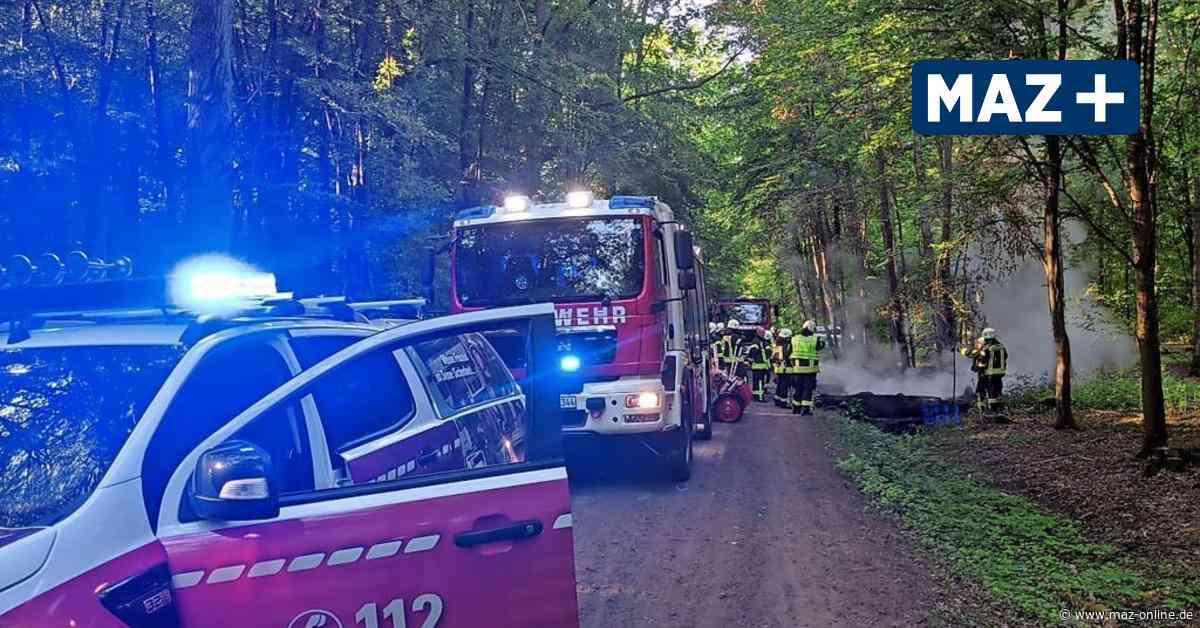 Hennigsdorf - Waldbrand-Serie: Feuerwehr vermutet Brandstifter - Märkische Allgemeine Zeitung