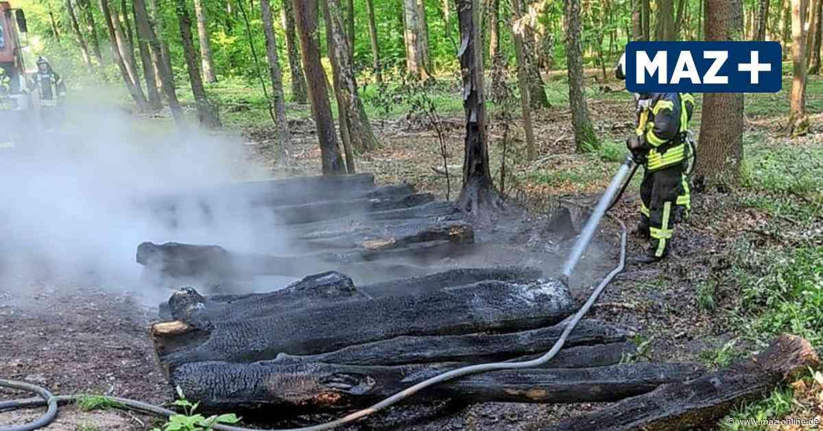 Hennigsdorf - Gleich zweimal brennt es im Wald – Verdacht auf Brandstiftung - Märkische Allgemeine Zeitung