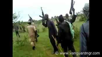 Kidnappers ambush, demand money through POS during pandemic – Potiskum - Vanguard