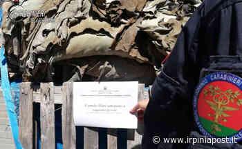 Inquinamento ambientale, a Solofra cinque denunce - Irpinia Post