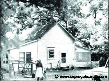 The Bloomingdale School, First Teacher Training Site In Hillsborough County - Osprey Observer