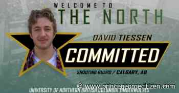 T-wolves add shooting guard Tiessen to the fold - Prince George Citizen
