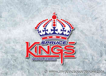 Spruce Kings make a plethora of moves - MY PG NOW