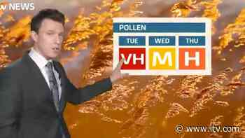 UK weather forecast: Grass pollen across the south west should reduce over the next few days - ITV News