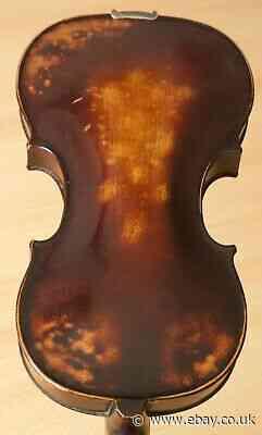 old violin 4/4 geige viola cello fiddle label JACOBUS STAINER 1209