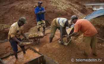 Mineros artesanales de Antioquia deben actualizar sus datos - Telemedellín
