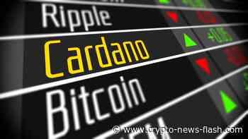 Cardano: Update zum Fortschritt von Shelley, ADA Kurs extrem bullisch - Crypto News Flash