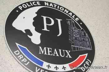 Croissy-Beaubourg : les policiers découvrent un arsenal chez un homme de 37 ans - Le Parisien