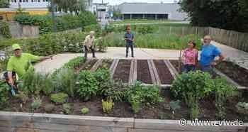 In Kernen sorgen ehrenamtliche Gärtner dafür, dass der Bürgergarten nicht verödet - Kernen - Zeitungsverlag Waiblingen