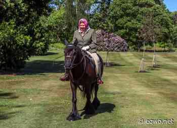 Erstmals seit Corona-Lockdown: die Queen reitet wieder aus! - EQWO - Equestrian Worldwide