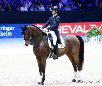 Endlich! Juan Matute Guimon ist wach! | Equestrian Worldwide | Pferdesport weltweit - EQWO - Equestrian Worldwide