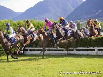 Pferdesport: Airsivie siegt im Preis Erste Hürden - Suedtirol News