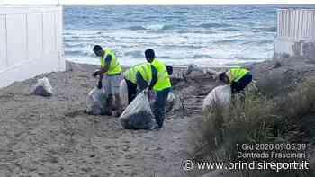 Ecotecnica a lavoro sulle spiagge: tirato a lucido il litorale nord di Brindisi - BrindisiReport