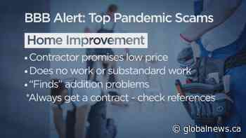 BBB releases new list of top pandemic scams