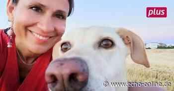 In Kinderhaus Trebur gibt es bald Projekte mit Kindern und einem Hund - Echo Online