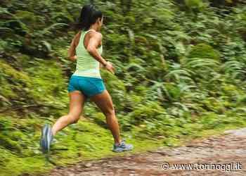 Parchi aperti a Settimo Torinese per le associazioni che praticano sport - TorinOggi.it