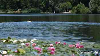 Seen in Darmstadt und Umgebung: Schwimmverbot jetzt auch am Erlensee - Frankfurter Rundschau