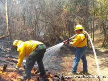 Apagan incendio forestal en Uruapan después de dos meses - Excélsior