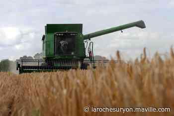Agriculture. Alerte donnée sur la concentration des fermes - maville.com