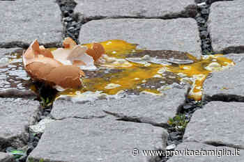 FLASH - Abortisti lanciano uova sui pro life - provitaefamiglia.it