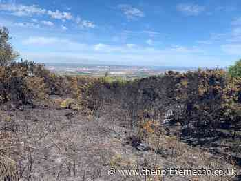 'It's like a bomb has hit it' - Eston Hills hit by days of fires - The Northern Echo