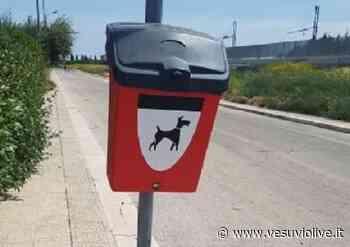 Torre del Greco, installati cestini per deiezioni canine: l'elenco delle strade - Vesuvio Live