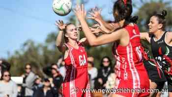 Junior sport gets green light but Newcastle Netball Association play a waiting game - Newcastle Herald