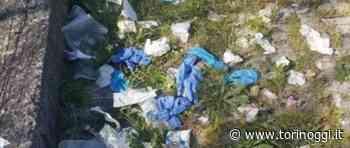 A Nichelino, per la giornata internazionale dell'Ambiente, maxi raccolta di mascherine abbandonate - TorinOggi.it