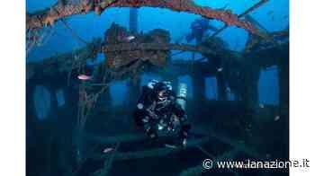 Allarme bomba sul relitto dell'Equa Da anni è meta di amanti del diving - LA NAZIONE