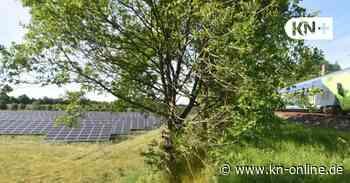 An der Bahntrasse - Solarpark nun auch in Bordesholm - Kieler Nachrichten