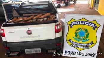 Traficante foge e abandona veículo carregado com 951 kg de maconha - O Pantaneiro