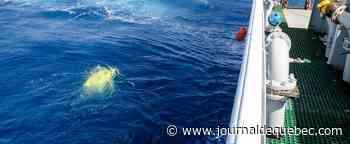 Fin de l'opération de récupération du «Stalker 22» en mer Ionienne