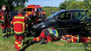 Schwarzenbek: Nach zwei Kilometern durch die Stadt: Verletzte Katze aus Motorraum gerettet | shz.de - shz.de