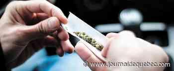 Cannabis au volant: une vaste campagne publicitaire cet automne à Québec