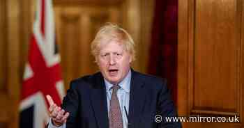 'How many more coronavirus deaths before 'winging-it' Johnson feels shame?'