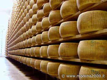 """Agrinsieme Reggio Emilia: """"Parmigiano Reggiano, servono provvedimenti urgenti"""" - Modena 2000"""