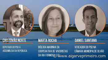 """Ria Formosa é tema do próximo """"Conversas à Quinta-feira"""" promovido pelo PSD de Olhão - Algarve Primeiro"""