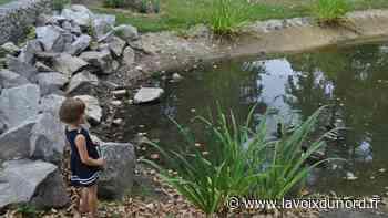 À Laventie, le parc Cœur de ville est ouvert - La Voix du Nord