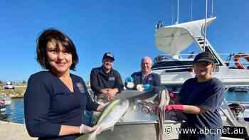 Award-winning Geraldton producers improve region's reputation as seafood hotspot - ABC News