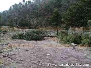 Incendios forestales y tala ilegal en el Pico de Orizaba afectan recursos hídricos - alcalorpolitico