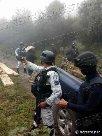 Tras diez años de tala clandestina en Pico de Orizaba; Guardia Nacional va por talamontes - NORESTE