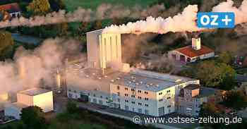 Ehemaliger Realschüler aus Kölzow managt größte Destille im Norden - Ostsee Zeitung