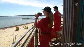 Corona-Regeln: DLRG-Rettungsschwimmer im Norden stehen vor Herausforderungen - Sat.1 Regional