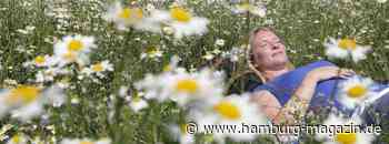 Naturgenussfestival starten im echten Norden - hamburg-magazin.de - Hamburg-Magazin