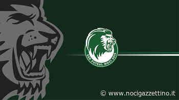 Futsal Noci 2019. Confermata la guida sportiva e tecnica - NOCI gazzettino