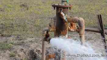 Overextracting of bore water in Griffith targeted