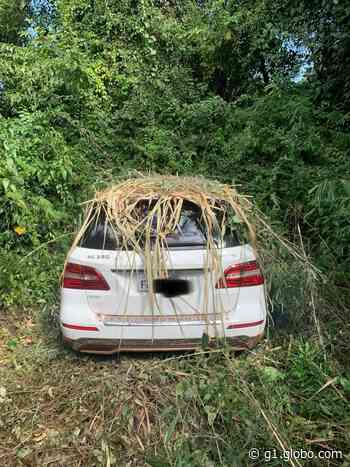 Polícia localiza carro de luxo roubado escondido na mata em Artur Nogueira - G1
