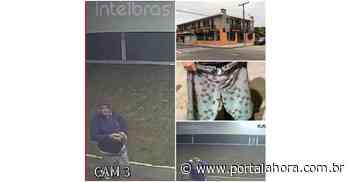 Garopaba: Três meses depois de ser preso por furto, jovem é detido após ser filmado arremessando pedra em vidro de conveniência do Centro - Portal AHora
