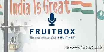 Fruitbox: How to make the right connections